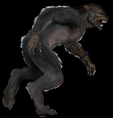 werewolf blog pic